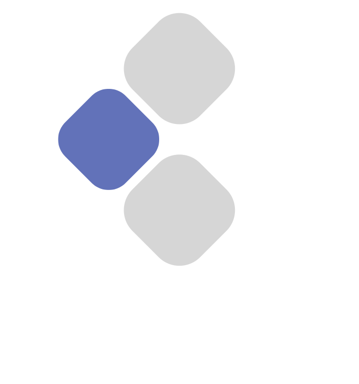 Business Software Solutions Kft.